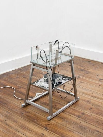 Judith Fegerl, 'Incubator', 2010