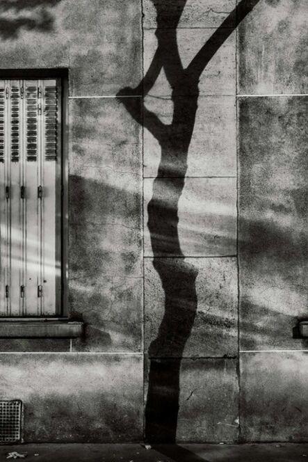 Michael Wolf (1954-2019), '#4, Paris Tree Shadows', 2014