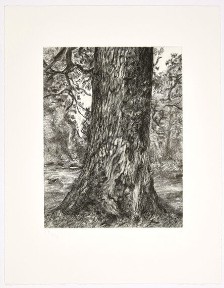 Lucian Freud, 'After Constable's Elm', 2003