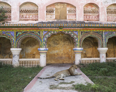 Karen Knorr, 'Maharani's Attendant, Thanjavur Palace, Tanjore'