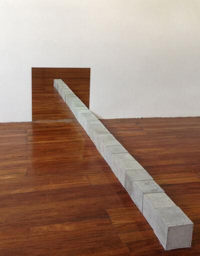 Túlio Pinto, '6,12 MetrosHorizontal', 2013