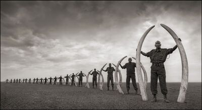 Nick Brandt, 'Rangers (Line of) with Tusks of Killed Elephants, Amboseli 2011', 2011