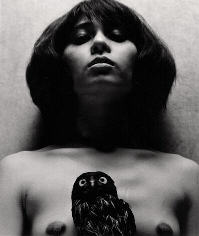 Eikoh Hosoe, 'Owl', 1964