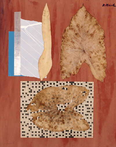 Dorothy Hood, 'Thinned Leaves', 1982-1997