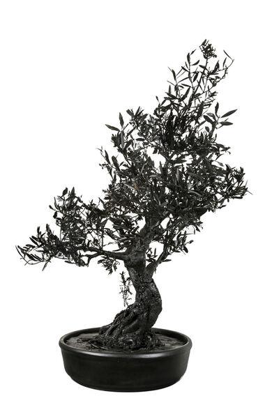 Philippe Pasqua, 'Bonsai Tree', 2017