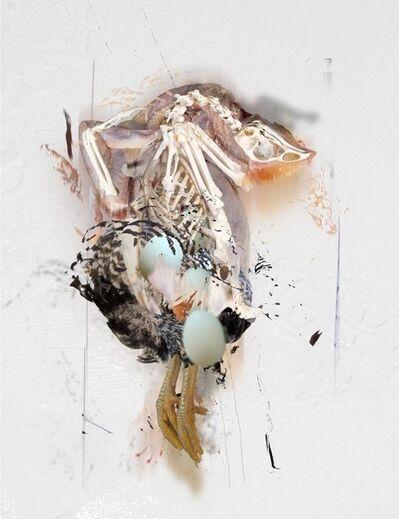 Deborah Oropallo, 'Chicken Egg Chicken #6', 2013