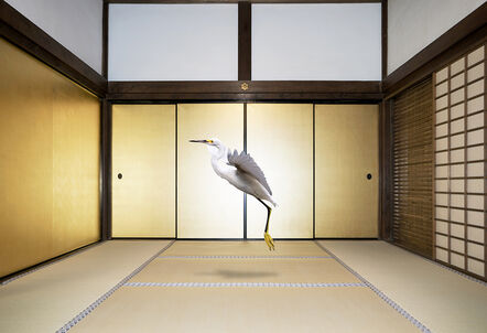 Karen Knorr, 'Form no Other then Emptiness, Obai-in, Kyoto', 2017
