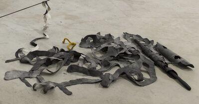Iza Tarasewicz, 'The Pleats of Matter', 2016