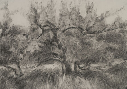 Connie Hayes, 'Orchard #11'