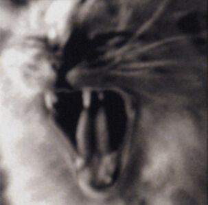 Helena Chapellin Wilson, 'Clara', 1997