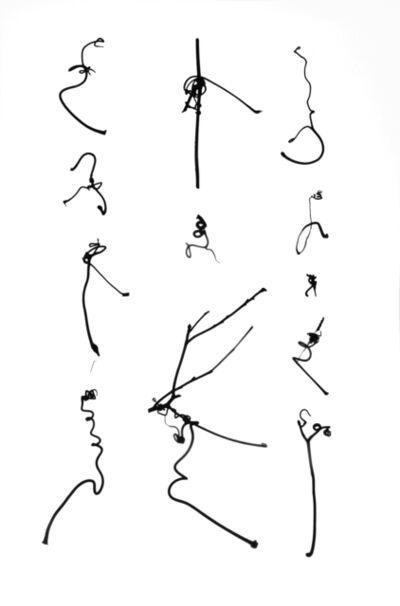 Cui Fei, 'Tracing the Origin IX_I_iv', 2012