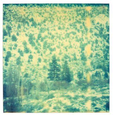 Stefanie Schneider, 'Green Valley (close up) - Wastelands', 2003