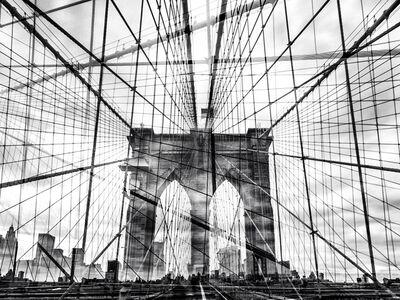 Nicolas Ruel, 'Web (New York, USA)', 2014