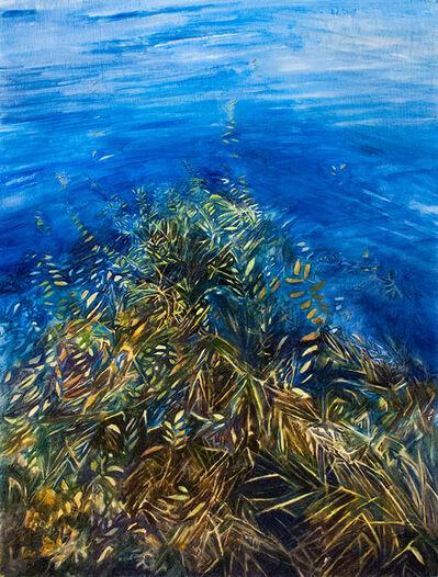 Brooke Lanier, 'Submerged 2'