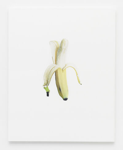 Haley Mellin, 'Banana Jpeg 1', 2014