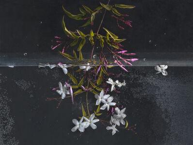 Pilar Pequeño, 'Jazmine (Edition 7 copies)', 2013