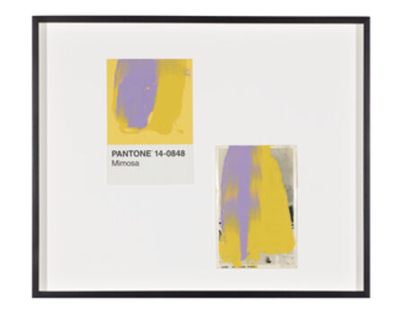 Tacita Dean, 'Pantone Pair (Mimosa)', 2019