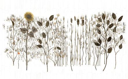 Anastasia Kimmett, 'Botanical', 2018
