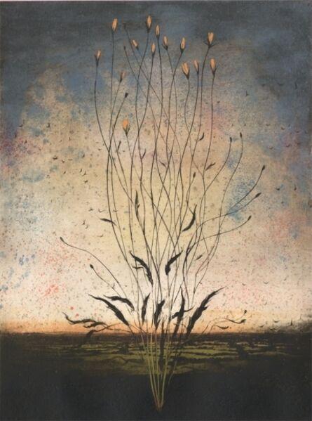 Michael Canning, 'Bardo', 2012
