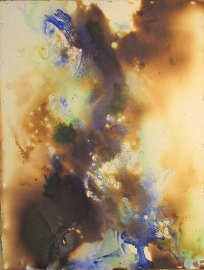 Peter Kephart, 'Abstract Natural #3', 2014