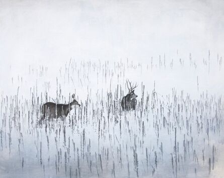 Robin Cole, 'January Deer', 2014