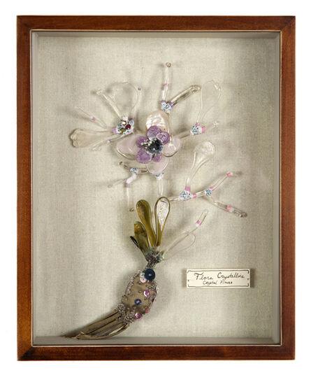Katerina Lanfranco, 'Flora Crystallina (Crystal Flower)', 2013