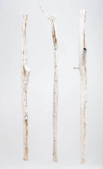 Azade Köker, 'Orthopädische Zustände', 2015