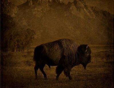 Jack Spencer, 'Buffalo/Tetons, Wyoming', 2007