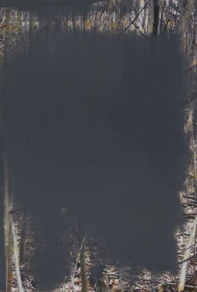 Gerhard Richter, 'Wald (Forest) II', 2008