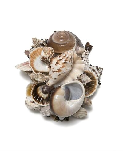 Claire Begheyn, 'Small Shell Series 19'
