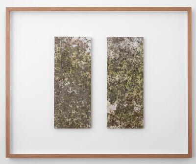 Luca Vitone, 'Untitled', 2016