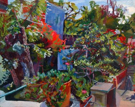 Jenny Toth, 'San Miguel Backyard at Naptime', 2014