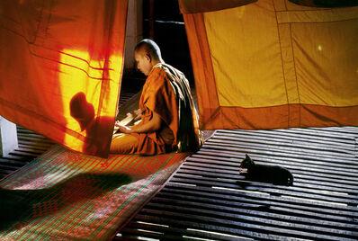 Steve McCurry, 'Monk and Cat, Thailand, Steve McCurry, Photography, Fine Art Print', 1996