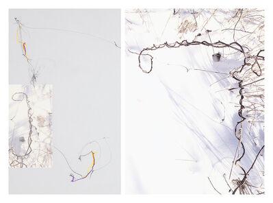 Sandi Haber Fifield, 'Untitled (LF 17 #176)', 2016