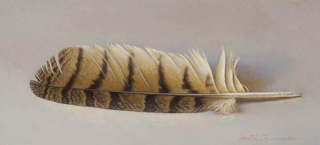 Scott Fraser, 'Hawk Feather', 2018