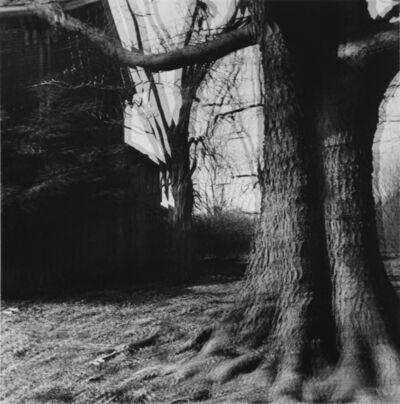 "Ralph Eugene Meatyard, 'Untitled (""Motion-Sound"" Landscape)', 1969/1974"