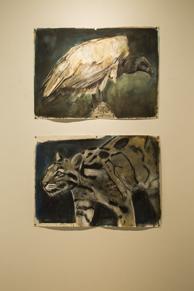 Russ Ronat, 'African White Backed Vulture #2 & Clouded Leopard', 2018