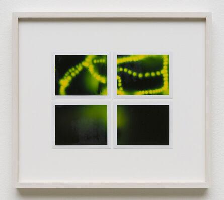 Peter Miller, 'Photuris #30', 2013