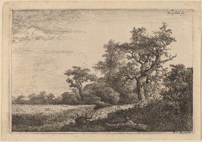 Jacob van Ruisdael, 'Grain Field at the Edge of a Wood (Corn Field)'