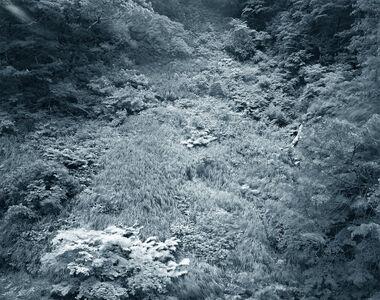 Yojiro Imasaka, 'Illuminating Earth 134 - C16 May 1 2020', 2020