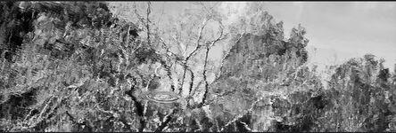 Daniel Ackerman, 'Reflejos III | Reflections III', 2016-2017