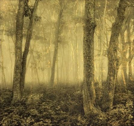 Joyce Tenneson, 'Early Light, Ducktrap, Maine'