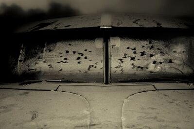 Angela Bacon-Kidwell, 'Night Hunt', 2008