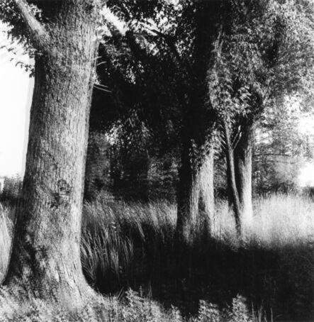 Ralph Eugene Meatyard, '#4 Motion-Sound', n.d.