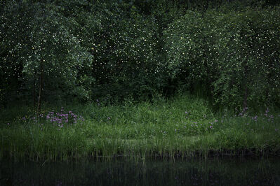 Ellie Davies, 'Stars 6', 2014