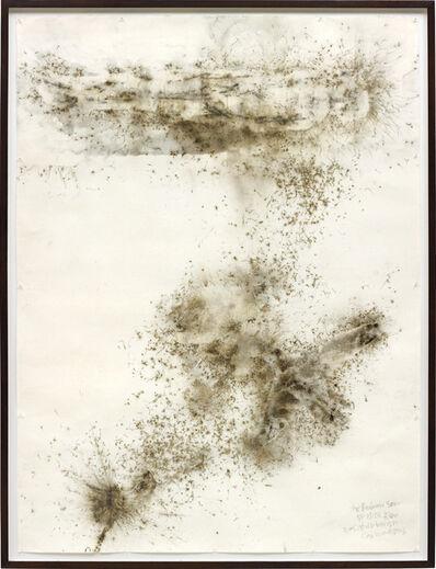 Cai Guoqiang 蔡国强, 'Life Beneath the Shadow: The Brahan Seer', 2005