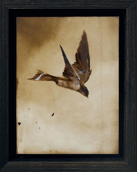 """Brad Kunkle, '""""Ornithology No. 12""""', 2014"""