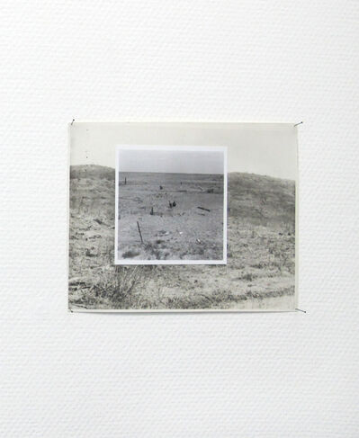 Risk Hazekamp, 'Reforestation 02', 2014