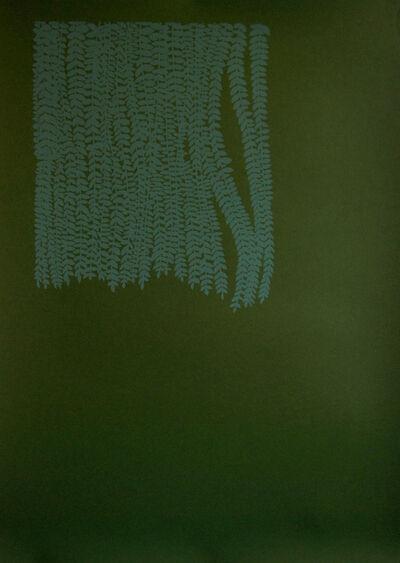 Felipe Mujica, 'Sin Titulo (para Cuenca) - Curtain #2'