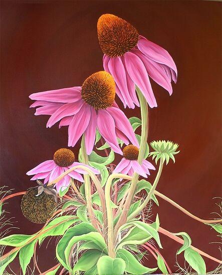 Allison Green, 'Echinacea', 2011